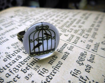 The Birdcage Ring. Choice of French or Modern Birdcage Picture ring