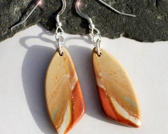 Painted Desert - Succor Creek Jasper Sterling Silver Earrings