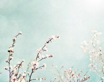 Cherry Blossom, Summer Sky, Flowers, Farmhouse Art, Beach House Art, Large Artwork, Square Artwork