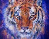 Tiger Fire - A4 Print of an Original Painting