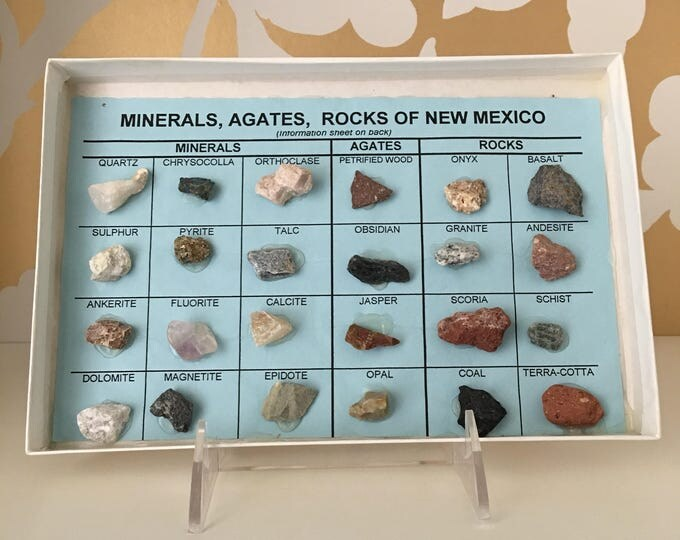 Rocks of New Mexico Vintage Natural Specimen Display