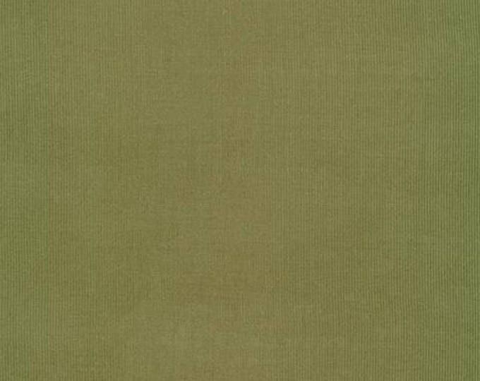 Organic CORDUROY Fabric - Cloud9 Spring Quartet - Olive