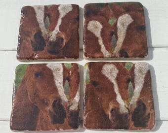 Twin Foals Set of 4 Tea Coffee Beer Coasters