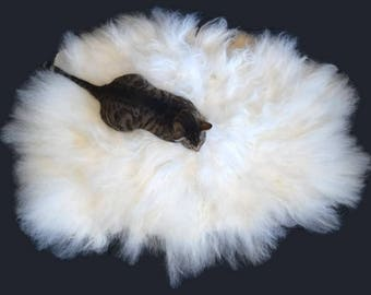 Cruelty Free, Navajo Churro, Cat Bed, Dog Bed, Pet Bed, Felted Wool, Fleece Rug, White Wool, Humane Sheepskin, Eco Friendly