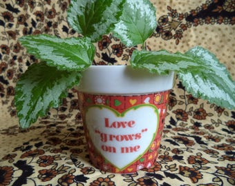 Love grows on me flower pot/ vintage small glass flower pot/ red with hearts and daisies flower pot/ tiny pot for plants/ hippie flower pot