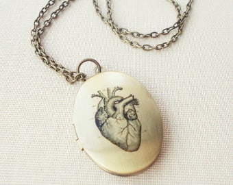 Anatomical Heart Locket Necklace, Medical Illustration, Vintage Brass Heart Jewelry, Science Medical Gift