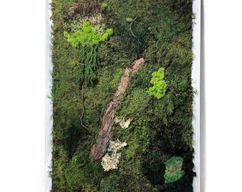 moss wall garden - rustic