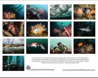 2018 Underwater Photography Calendar
