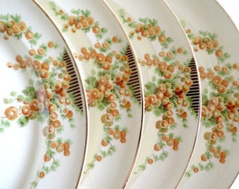4 Vintage Dinner Plates by Taylor Smith & Taylor, Orange Snowball Flowers, Circa 1942 Discontinued, Vintage China by  TheSweetBasilShoppe