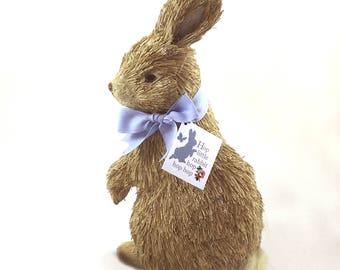 Bristle Bunny Rabbit