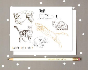 Cat Positions Happy Birthday Greetings card, Cat observations, Drawing of cats, Pencil Sketch of various cats, Drawings of cat postions