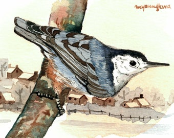 ACEO Limited Edition 1/25-Bird by the waterside village, Bird art print, Nuthatch, Bird print of watercolor ACEO, Miniature painting