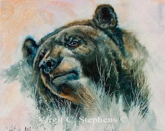 Bear Art, At A Glance, print of a black bear, wildlife artwork, bear print