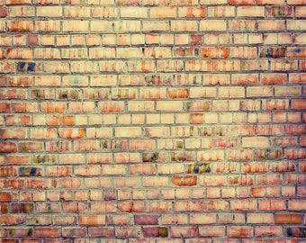 Autumn Brick - Exclusive - Vinyl Photography Backdrop Floordrop Prop