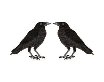 Raven - American Black Crow - Black Bird - Bird - Iron On Patches - Set Of 2