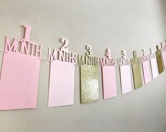 First Birthday Photo Banner, First Birthday Banner, 1st Year Photo Banner, One Year Photo Banner, Monthly Photo Banner, Pink & Gold Birthday
