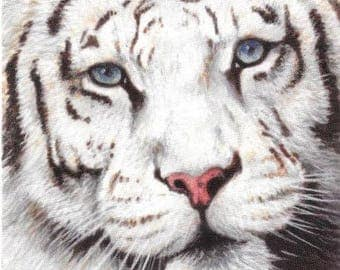 White Tiger: Sasha