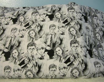 Harry Potter, Ron Weasley and Hermione Granger/Pillowcase
