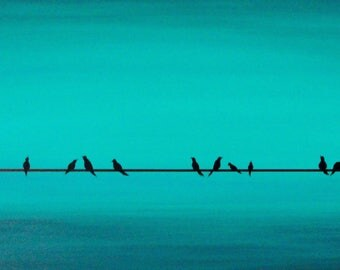 Teal birds on wire 2