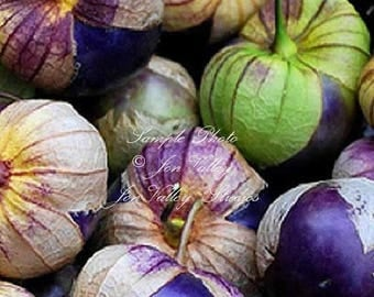 Purple Tomatillo 25 Vegetable Seeds See Recipe Compact Vines Fruit bursting with Flavor - Salsa - Fresh in salads, Pickled, canned