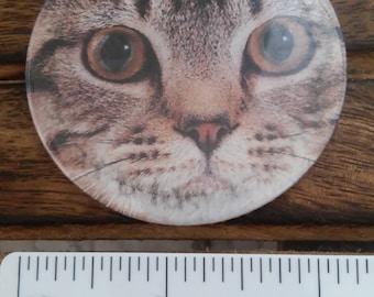 grey tabby cat kitten  theme handbag mirrors handmade ltd editions choice of design