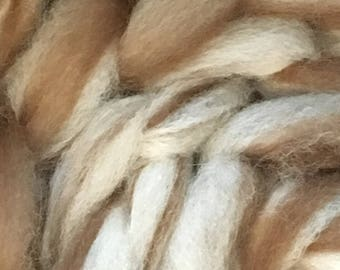Two Color Alpaca Silk Roving