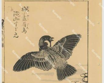 Outstanding & original Japanese woodblock print, Decorative art, Japanese art, Kōno Bairei (1844-189) Bird Print
