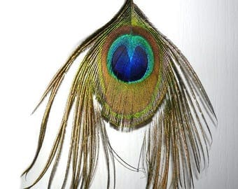 Wide large Peacock feather plume Peacock for creating jewelry for fashion accessory