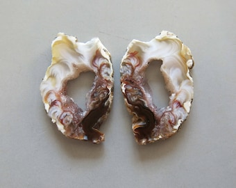 A Pair Natural Druzy Agate Geode Slices C5136