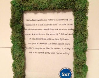 Preserved moss picture frames