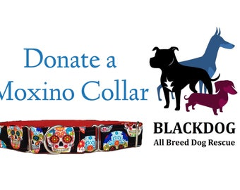 Donate a custom collar Blackdog all breed dog rescue program.