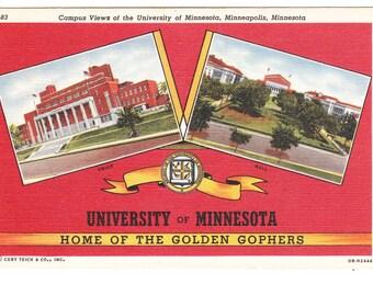 University of Minnesota, Minneapolis Vintage Postcard