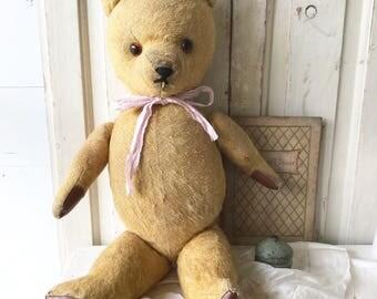 A lovely vintage teddy bear