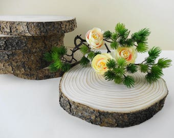 "7""-8"" Tree Slices, Wood Slices, Wood Slabs, Tree Trunk Slices, Wedding Wood Chargers, Woodworking, Tree Slices, Wood Round Table Riser"