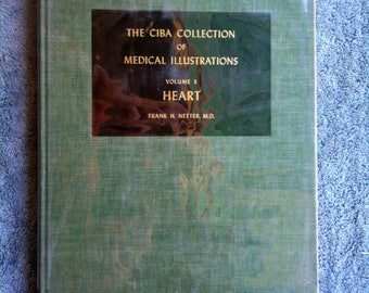 Ciba Collection Volume 5 Heart Frank H Netter Anatomy Drawings Medical Painting Medical Illustrations Medical Book Vintage 1975 Hardcover