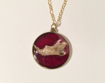 Mouse Jawbone Red Glittery Pendant Necklace