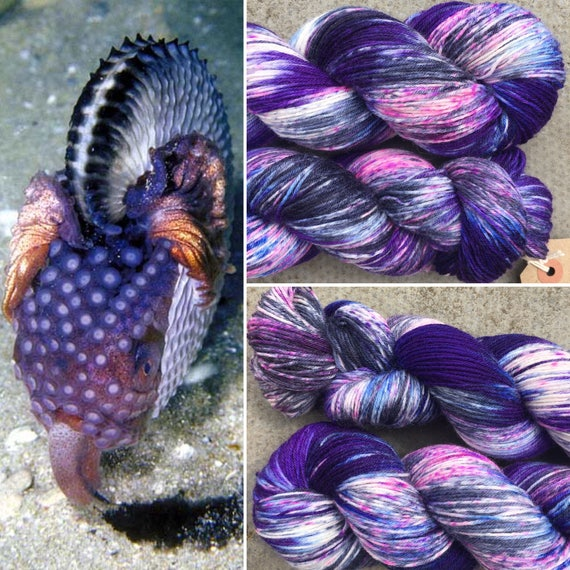 Argonaut BFL, speckled cephalopod theme indie dyed bluefaced leicester nylon sock yarn