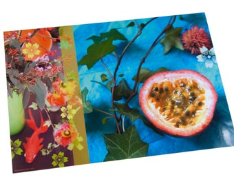 Laminated placemat passion fruit and goldfish