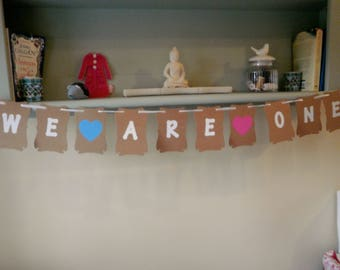 We Are One Birthday Bunting, Any Age