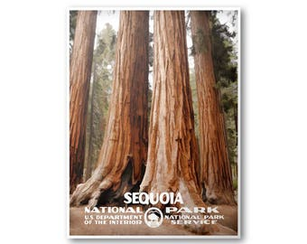 Sequoia National Park Poster