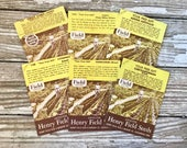 Lot of 6 Vintage Seed Packets, Henry Field Seed & Nursery Co, Shenandoah, Iowa, Farm, Store Stock, Floral Prints, Flower Prints