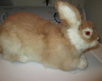 Vintage Real Rabbit Fur Stuffed Bunny Rabbit, Taxidermy, Life Size