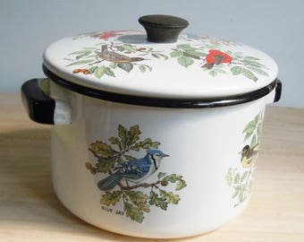 Vintage Enamelware /Stock Pot with lid / Lightweight / Charming Bird Imagery / 5 Species / Great Usable Condition