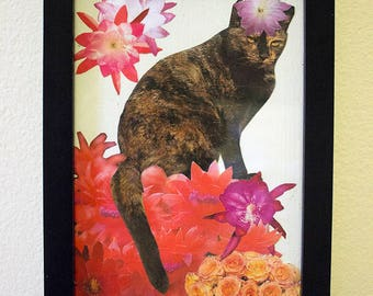 cat sitting on red flowers - small framed collage
