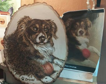 Pyrography - Wood burned Pet Portrait - Drover