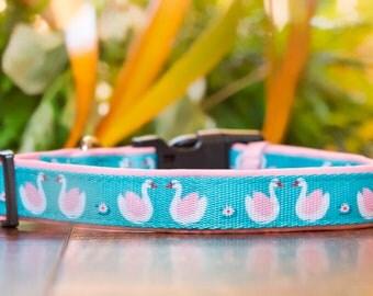 Swan Dog Collar / Dog Collars Australia