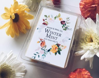 WINTER MINT Soy Wax Melts | Scented Wax Melts | Scented Wax Tarts