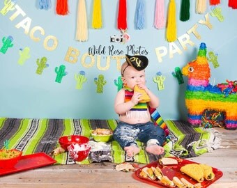 Taco Bout A Party Banner, Fiesta Taco Party Decor, Cactus Garland