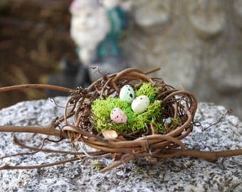 Limited Edition - DIY Birds Nest with Eggs