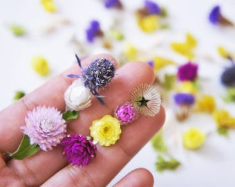 Limited Colorful mix dried mini flowers, berries and leaves for resin jewelry, mixed flower for glass orb or vial filter, dried mini flower